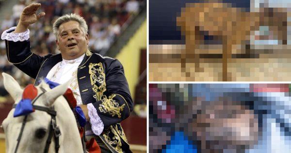 Reveladas imagens do estado VERGONHOSO em que João Moura deixou os cães