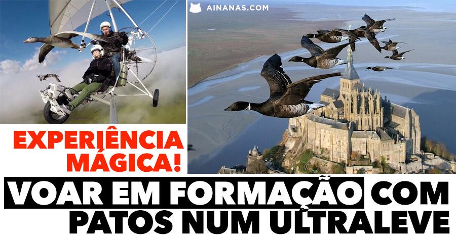 MÁGICO: voar em formação com os patos num ultraleve