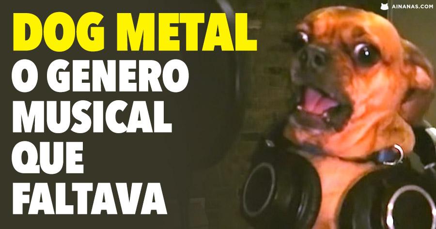 DOG METAL é o género musical que faltava