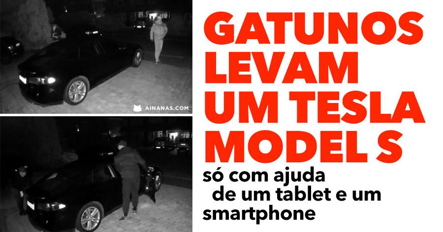Gatunos ROUBAM TESLA MODEL S só com tablet e smartphone