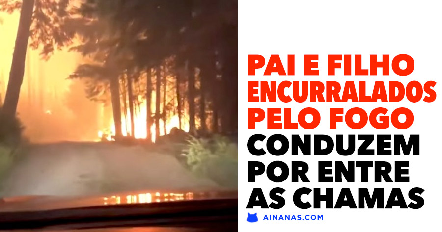 ATERRADOR: Pai e Filho conduzem pelo meio de fogo florestal