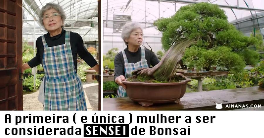 A primeira ( e única ) SENSEI de Bonsai do Planeta