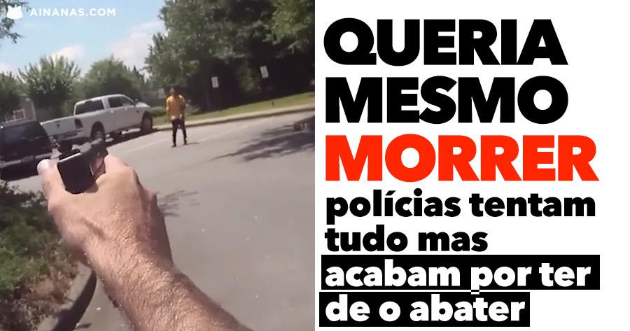 TENSO: polícias tentam tudo mas acabam por ter de o abater