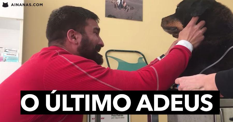 O ÚLTIMO ADEUS de um Rapaz ao Seu Cão