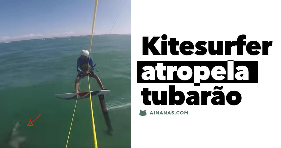 Kitesurfer ATROPELA TUBARÃO