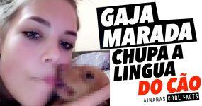Gaja marada CHUPA A LÍNGUA do cão