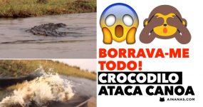 BORRAVA-ME TODO! Crocodilo ataca canoa