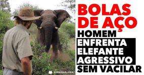 BOLAS DE AÇO: homem enfrenta elefante sem vacilar
