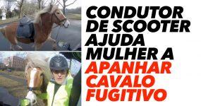 Condutor de Scooter Ajuda Mulher a apanhar CAVALO FUGITIVO
