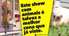 Este show de Animais é capaz de ser a MELHOR CENA que já viste!