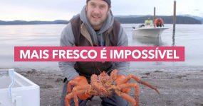 Caranguejo mais fresco é impossível
