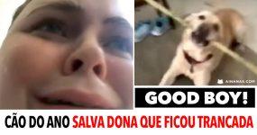 CÃO DO ANO salva dona que ficou trancada