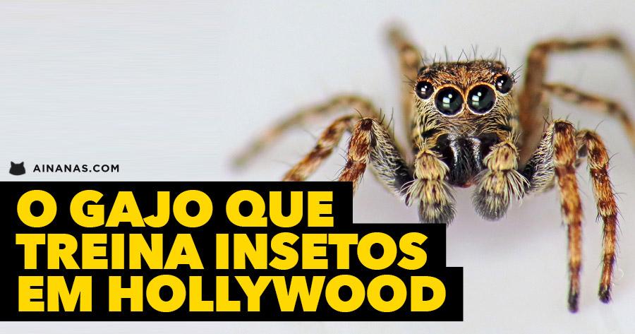 O gajo que TREINA INSETOS em Hollywood