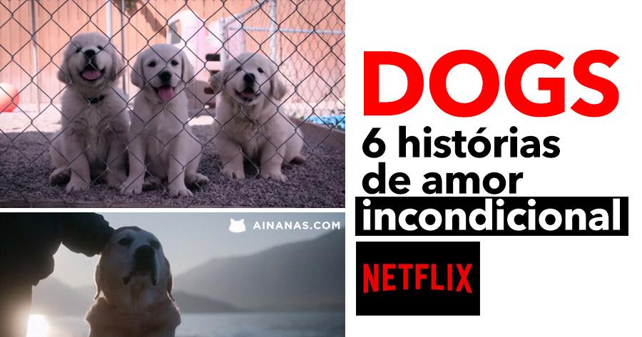 DOGS: 6 histórias de amor incondicional na Netflix