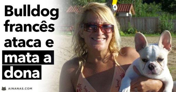 BULLDOG FRANCÊS ataca e mata a dona