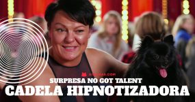 HYPNODOG: A cadela capaz de hipnotizar humanos brilhou no Got Talent