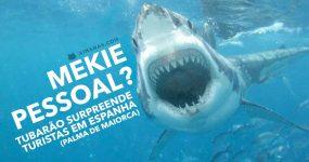Tubarão Assusta Turistas em Espanha ( Palma de Maiorca )