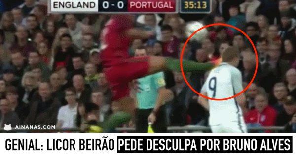 Licor Beirão PEDE DESCULPA por BRUNO ALVES