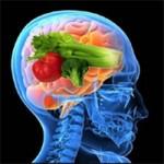 12 Alimentos que Fortalecem a Memória