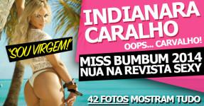 Indianara Carvalho: Miss Bumbum 2014 Despe-se na Sexy