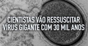 Cientistas vão ressuscitar Vírus Gigante com 30 Mil Anos