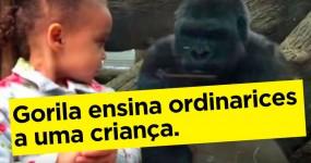 Gorila Ensina Ordinarices a uma Criança