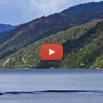 NESSIE? Novas imagens captadas em Loch Ness