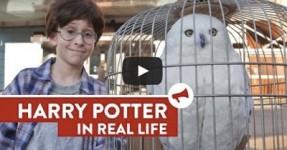 Harry Potter na Vida Real