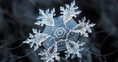 A Beleza Única de Cada Floco de Neve