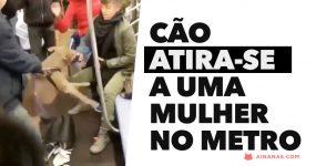 Cão atira-se a uma mulher no metro