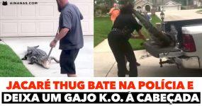 JACARÉ THUG bate na polícia e  deixa um gajo K.O. à cabeçada