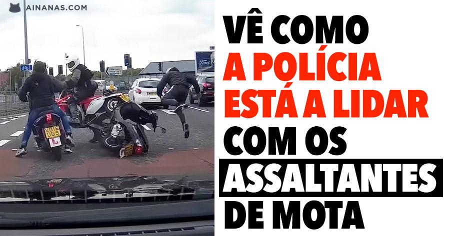 Vê como a polícia está a lidar com os ASSALTANTES DE MOTA