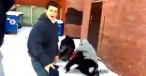 Rapaz Violentamente Atacado por Sete Cobardes