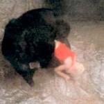 Criança de 3 anos cai no Fosso dos Gorilas