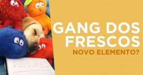 Gang dos Frescos: Novo Elemento?