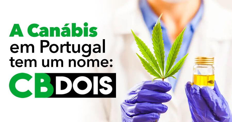 A Canábis em Portugal tem um nome: CB2