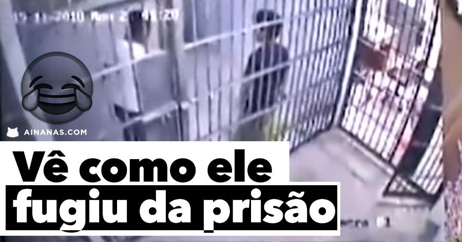 Finge que tem COBRA NA CELA para fugir da prisão