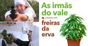 IRMANDADE DA ERVA: As freiras da moca!