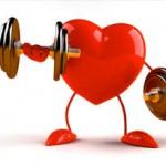 Descoberta Proteína capaz de Rejuvenescer o Coração