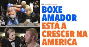 BOXE AMADOR está a crescer na América!