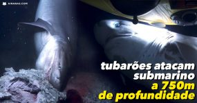Enormes Tubarões Atacam Submarino a 750 Metros de Profundidade
