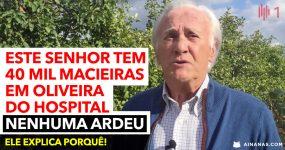 António Campos explica porque as suas árvores em Oliveira do Hospital NÃO ARDERAM
